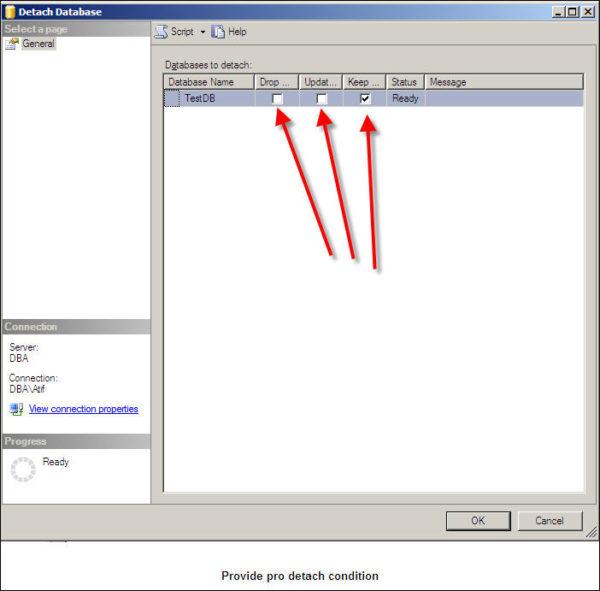 Detach SQL Server database-1